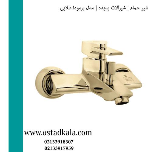 شیر حمام پدیده مدل برمودا طلایی